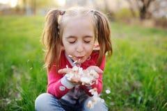 Retrato da menina da criança no fundo da grama fotos de stock