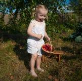 Retrato da menina loura com maçãs vermelhas Fotos de Stock Royalty Free