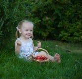Retrato da menina loura com maçãs vermelhas Fotografia de Stock
