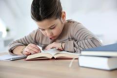 Retrato da menina nova com livros Imagens de Stock