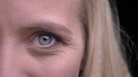 Retrato da metade-cara do close up da fêmea caucasiano bonita nova com os olhos cinzentos que olham em linha reta na câmera filme