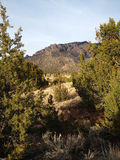 Retrato da montanha de Sandia imagem de stock
