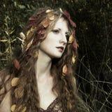 Retrato da mulher bonita na madeira Foto de Stock