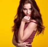 Retrato da mulher com cabelo marrom longo da beleza Foto de Stock Royalty Free