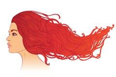 Retrato da mulher com cabelo vermelho bonito longo ilustração stock