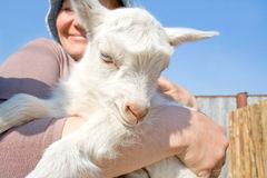 Retrato da mulher com goatling. Imagens de Stock Royalty Free