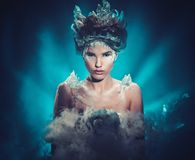 Retrato da mulher da fantasia da beleza do inverno fotografia de stock