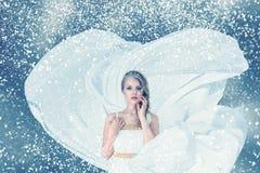Retrato da mulher da forma do inverno da neve imagens de stock royalty free