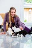 Retrato da mulher feliz com leite bebendo dos gatinhos Imagem de Stock