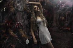 Retrato da mulher loura nova no mundo das fadas Fotos de Stock