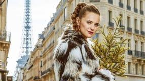 Retrato da mulher na moda com a árvore de Natal em Paris, França Fotos de Stock Royalty Free