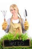 Retrato da mulher nova com ervas potted Fotografia de Stock Royalty Free