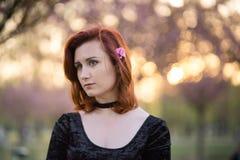 Retrato da mulher nova feliz do dan?arino do curso que aprecia o tempo livre em um parque da flor de cerejeira de sakura - ruivo  foto de stock royalty free