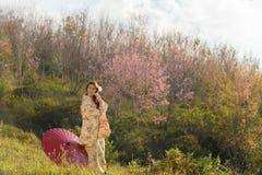 Retrato da mulher tradicional asiática Imagens de Stock