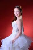 Retrato da noiva bonita Imagens de Stock Royalty Free