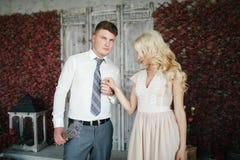 Retrato da noiva e do noivo Imagem de Stock Royalty Free