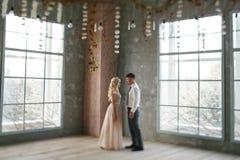 Retrato da noiva e do noivo Imagens de Stock