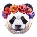 Retrato da panda com a grinalda principal floral ilustração royalty free