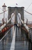 Retrato da ponte de Brooklyn Foto de Stock Royalty Free