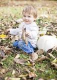 Retrato da queda do bebê Imagens de Stock Royalty Free