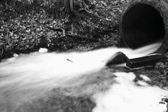 Retrato da represa pequena no rio Imagem de Stock