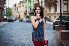 Retrato da roupa à moda modelo bonita e da bolsa luxuosa e Imagem de Stock