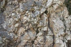 Retrato da textura da rocha Fotos de Stock