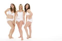 Retrato das mulheres em seu roupa interior Imagem de Stock