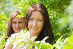 Retrato das mulheres na mola Fotografia de Stock Royalty Free