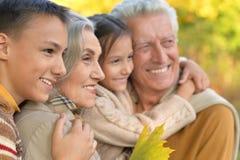 Retrato de abuelos con los nietos Imagen de archivo libre de regalías