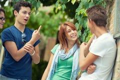 Retrato de adolescentes felizes no parque no verão imagem de stock royalty free