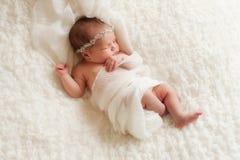 Retrato de Angelic Newborn Girl Fotografía de archivo