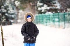 Retrato de 6 anos bonitos do menino no tempo de inverno Foto de Stock