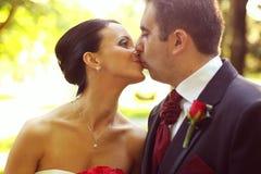 Retrato de besarse de novia y del novio imagen de archivo
