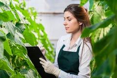 Retrato de biotechinican fêmea novo fotografia de stock royalty free