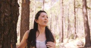 Retrato de caminar de la mujer almacen de video