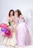 Retrato de casamento Fotos de Stock