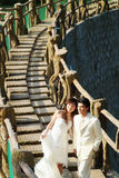 Retrato de casamento Fotografia de Stock Royalty Free