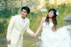 Retrato de casamento Imagens de Stock