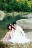 Retrato de casamento Foto de Stock