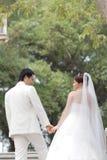 Retrato de casamento Imagens de Stock Royalty Free