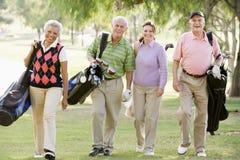 Retrato de cuatro amigos que disfrutan de un golf del juego imagen de archivo