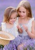 Retrato de dos hermanas en una lavanda fotos de archivo libres de regalías