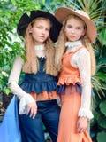Retrato de dos muchachas de novias en un verano imagen de archivo libre de regalías