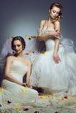 Retrato de dos novias europeas hermosas jovenes en vestidos de boda exclusivos Fotos de archivo