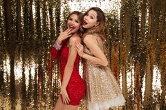 Retrato de duas mulheres entusiasmado felizes em vestidos sparkly Imagem de Stock