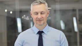 Retrato de falar Grey Hair Businessman, bate-papo video em linha vídeos de arquivo