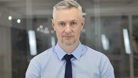 Retrato de Grey Hair Businessman mayor en oficina almacen de metraje de vídeo