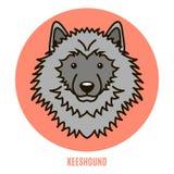 Retrato de Keeshound Ejemplo del vector en el estilo del plano Imagenes de archivo