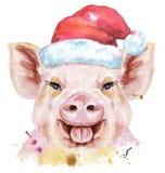 Retrato de la acuarela del cerdo en el sombrero de Papá Noel stock de ilustración